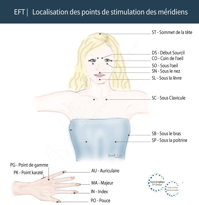 EFT Localisation des points d'acupuncture des méridiens